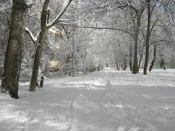 Февраль в Бирюлево
